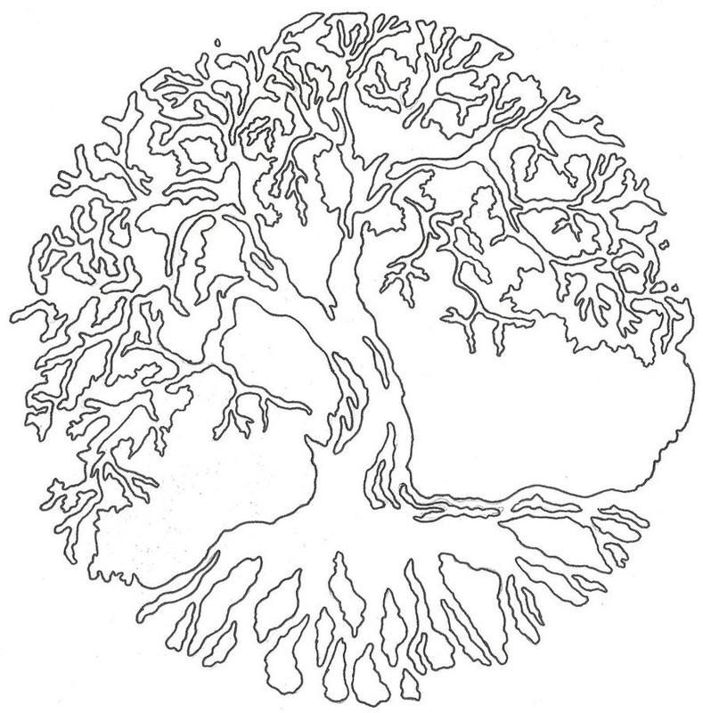 789x800 Tree Of Life Drawings