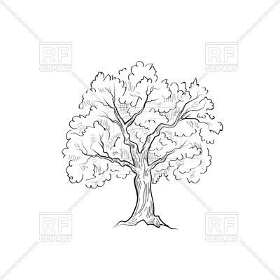 400x400 Tree With Leaves