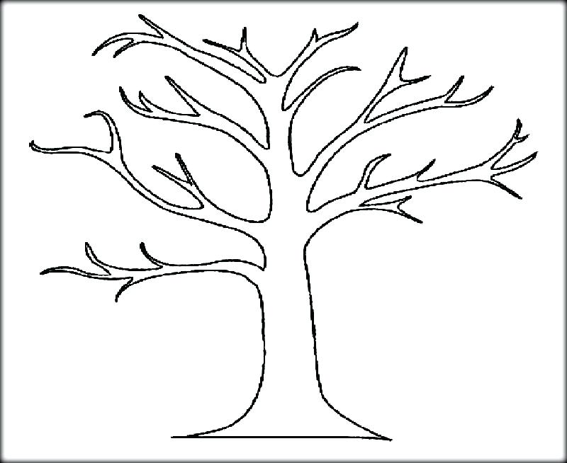 800x654 Coloring Pages Of Trees Awesome Drawing Oak Tree Coloring Page