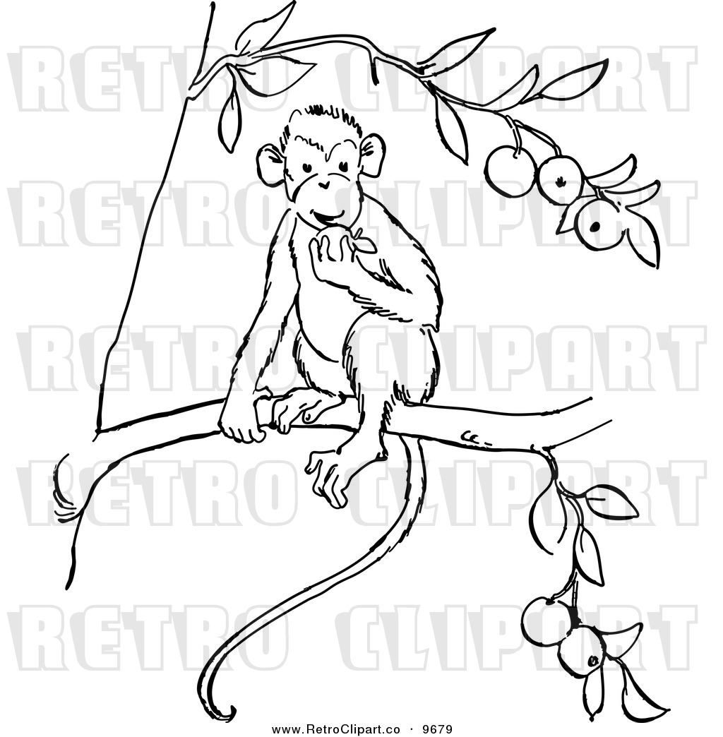 1024x1044 Free Black And White Line Drawing Clip Art