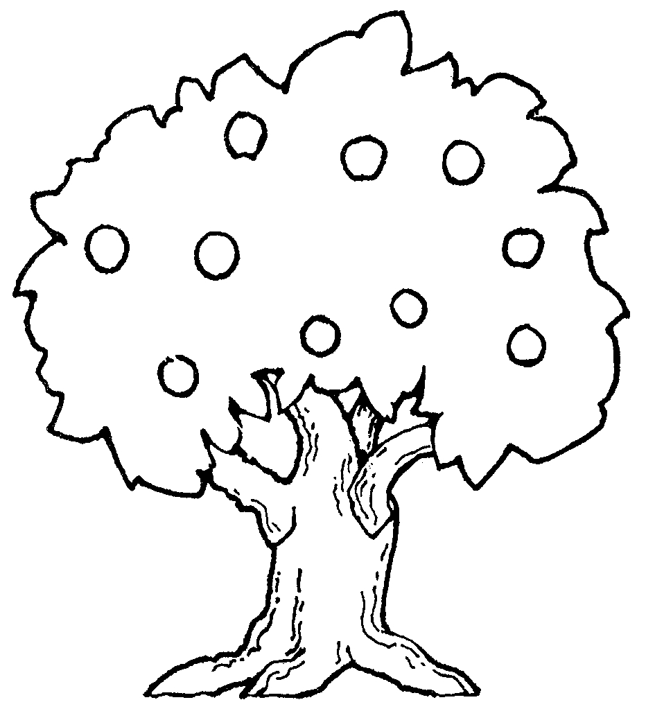 945x1049 Coloring Page Of Tree