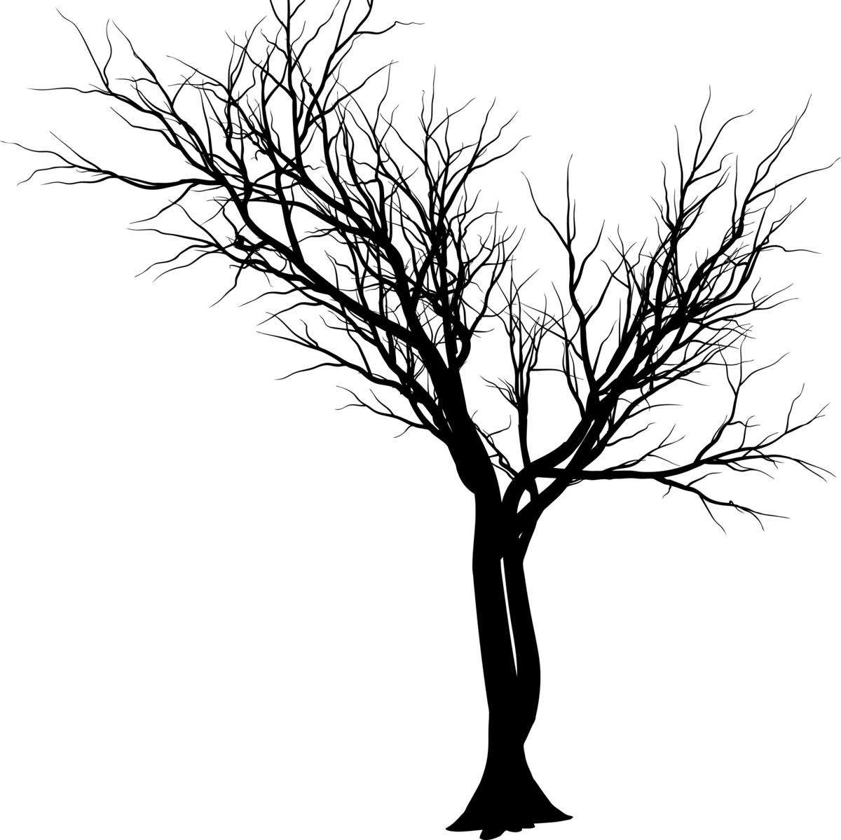 1200x1199 Extremely Enchanting Tree Tattoo Designs Especially For You