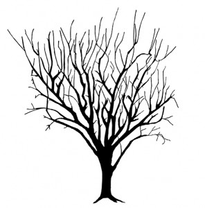 296x300 Gradually Reducing Size Of Fruit Trees Growplenty Productive