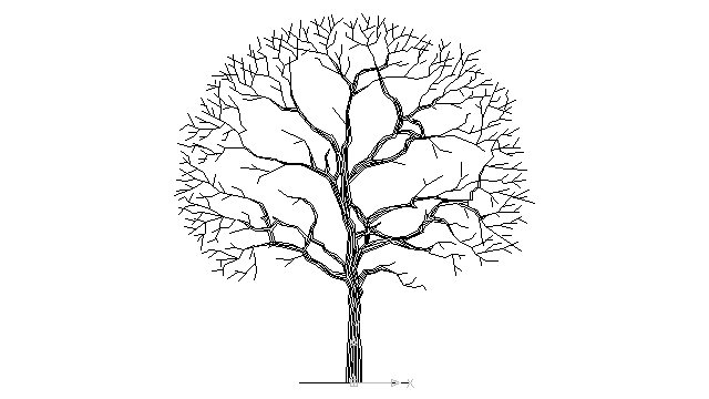 640x360 9 Best Images Of Drawing Of A Tree With No Leaves