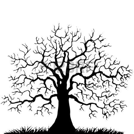 450x450 Tree Without Leaves Stock Photos. Royalty Free Business Images