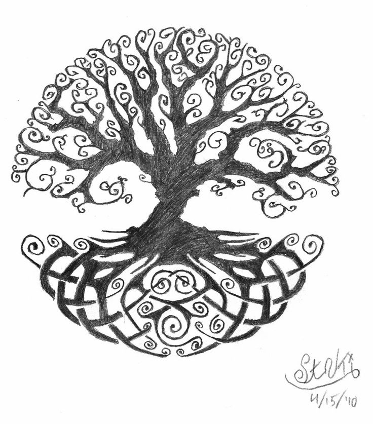 Tree Of Life Line Drawing