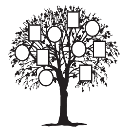 265x265 Family Tree Wall Decals Dezign With A Z
