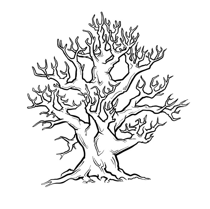 700x697 Big Old Tree. Freehand Drawing. Vector. Wall Mural We