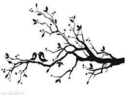 257x196 Cherry Blossom Branch Drawing