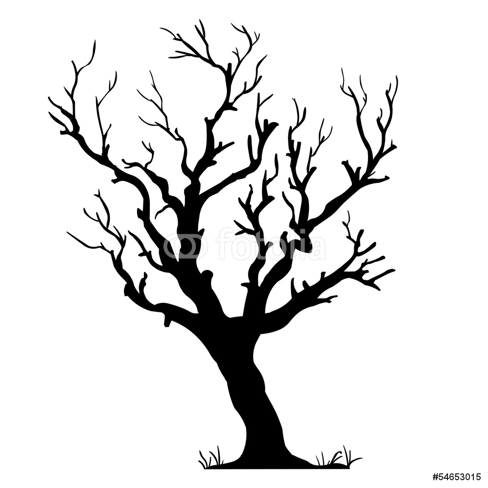 Tree On A Wall Drawing At Getdrawings Com Free For