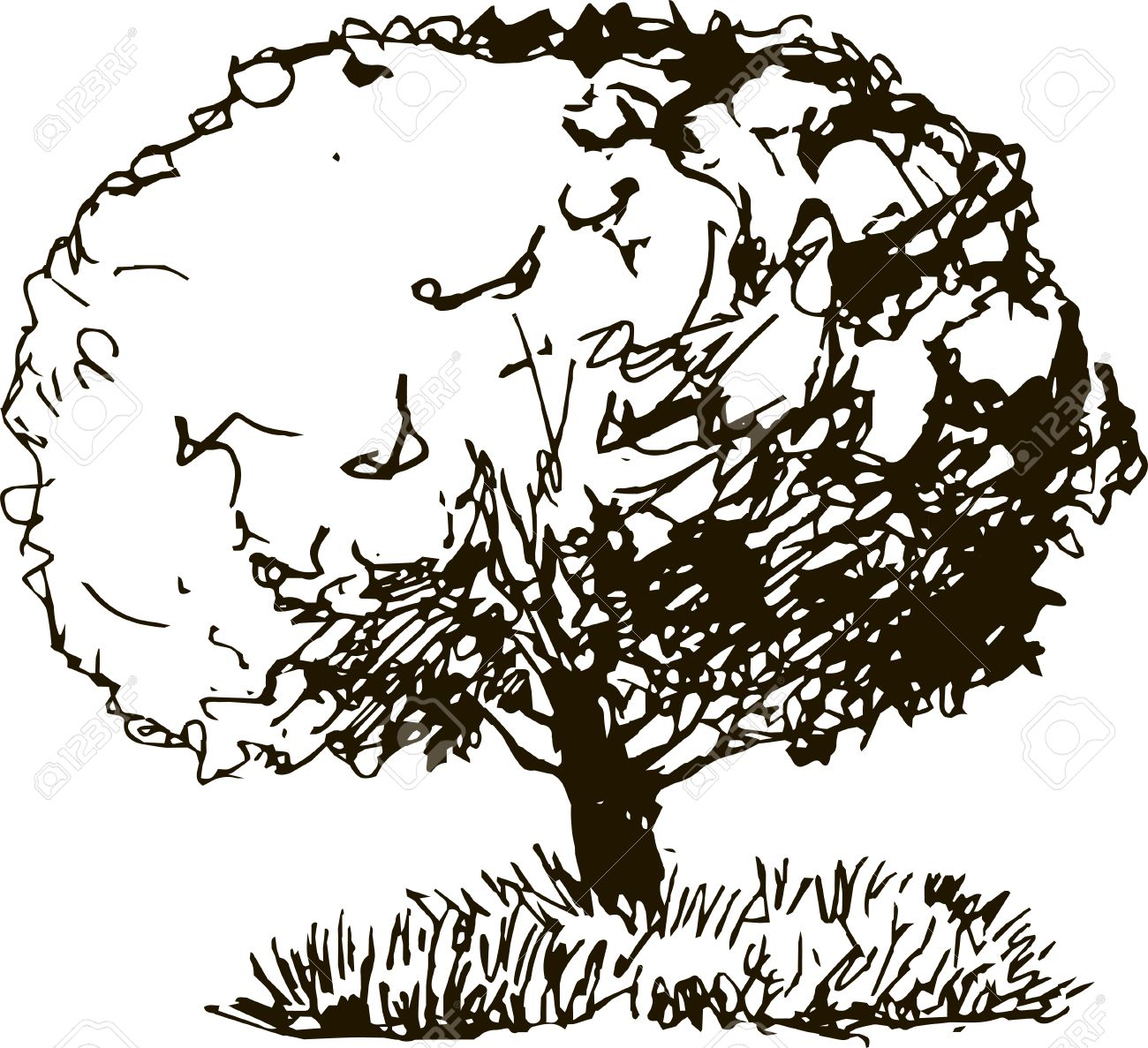 1300x1187 Deciduous Tree With Leaves And Grass Drawing By Pencil, Sketch