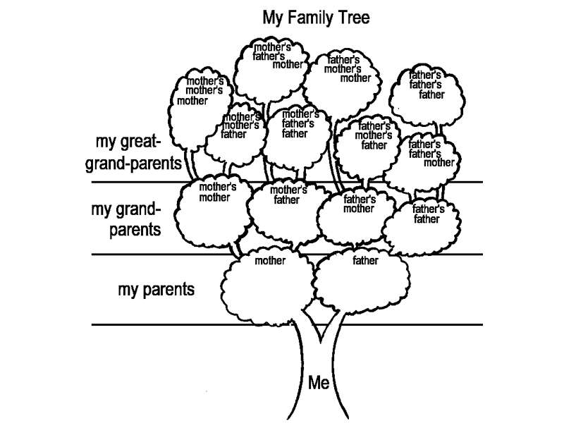 800x600 Factor Tree Activity Worksheets For All Download And Share