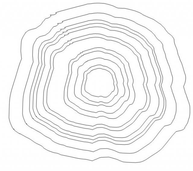 640x565 Handout 1 Tree Ring Analysis Miracles Tapestry Of Faith