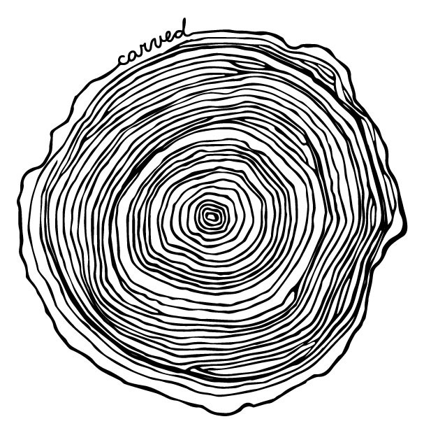 tree ring drawing at getdrawingscom free for personal