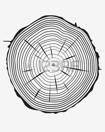 360x450 Tree Ring Stock Photos Amp Pictures. Royalty Free Tree Ring Images