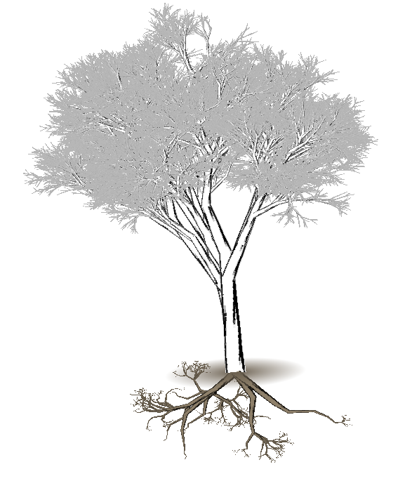 577x695 Projects Of Zack Booth Simpson Tree Generator