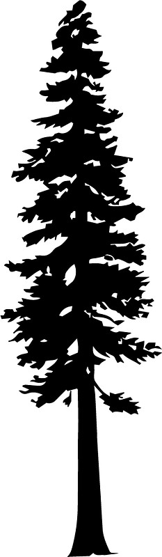 233x800 Redwood Tree Silhouette Stickers by katedill0n Redbubble