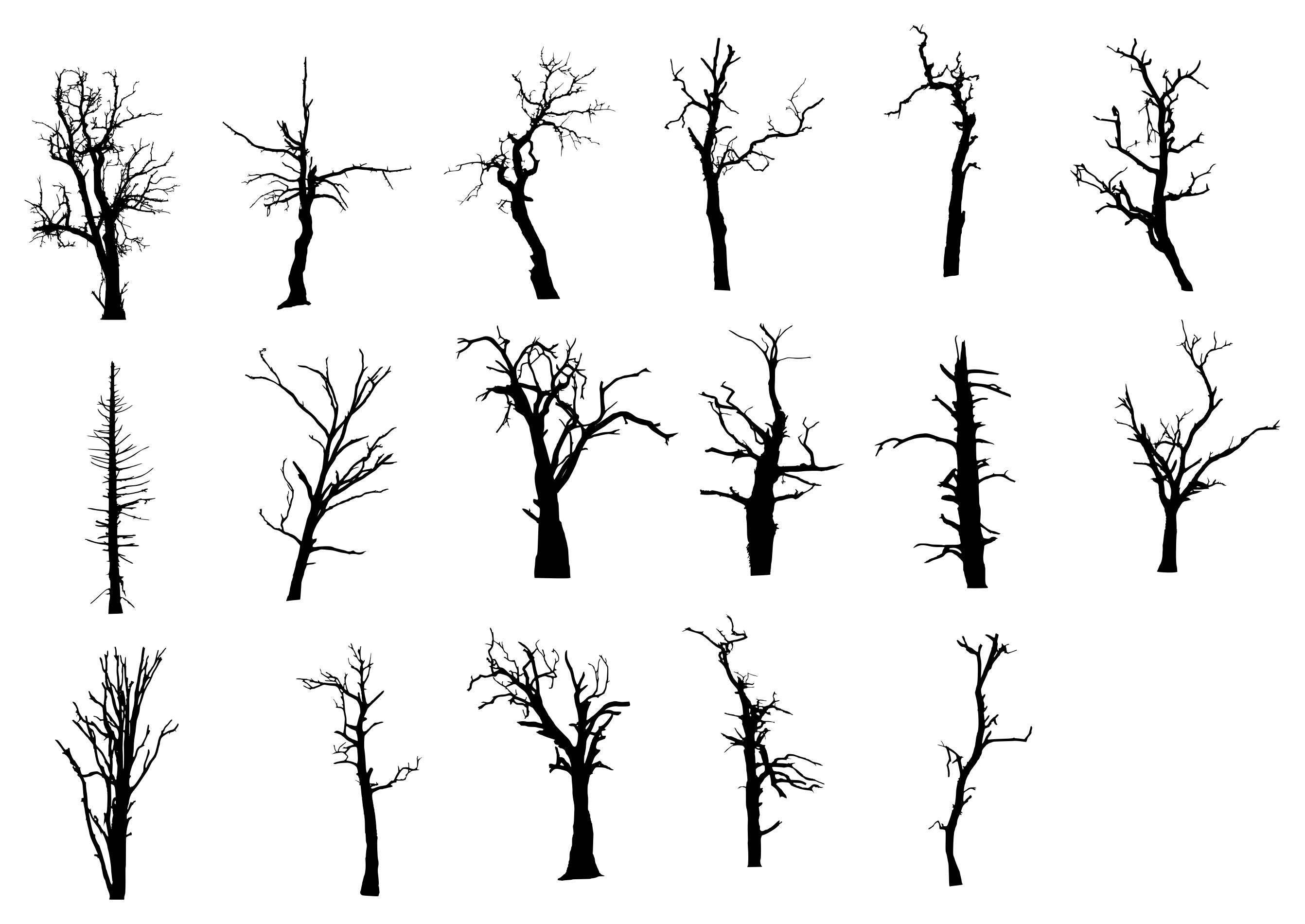 2684x1900 17 Dead Tree Silhouette (PNG Transparent)