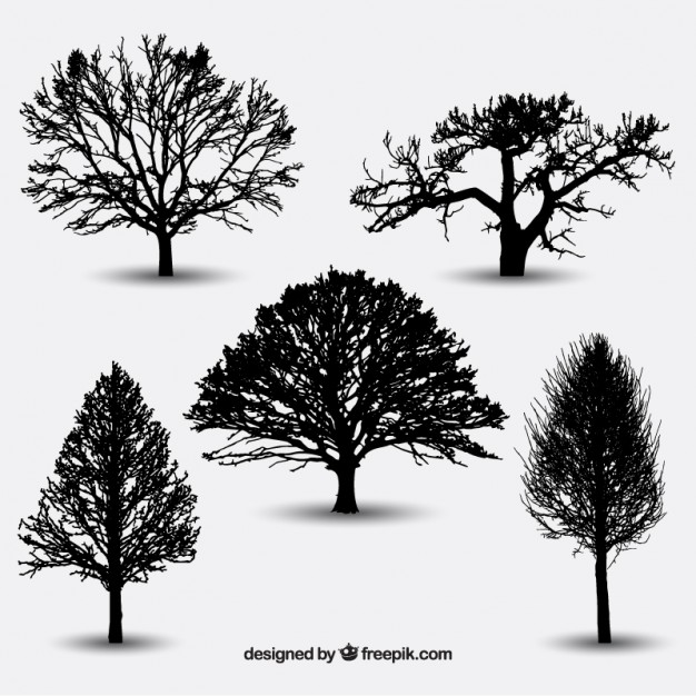 626x626 Tree Silhouette Vectors, Photos and PSD files Free Download