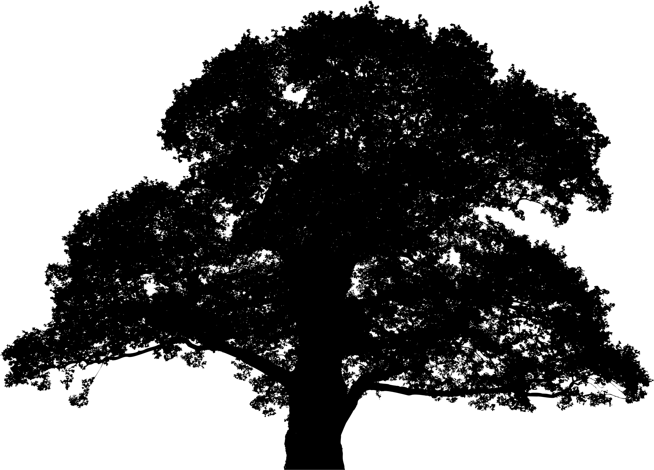2258x1622 Clipart