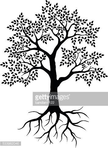 355x484 Black Tree Silhouette For Your Design Premium Clipart