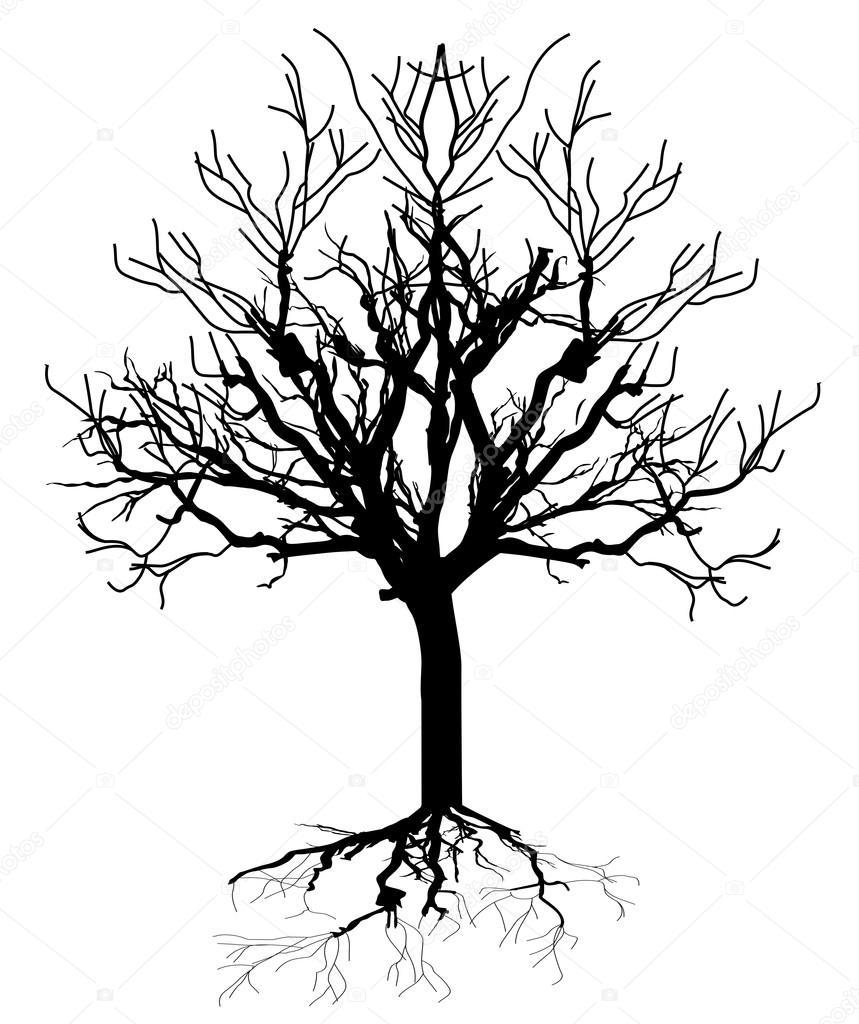 859x1024 Dead Tree Silhouette