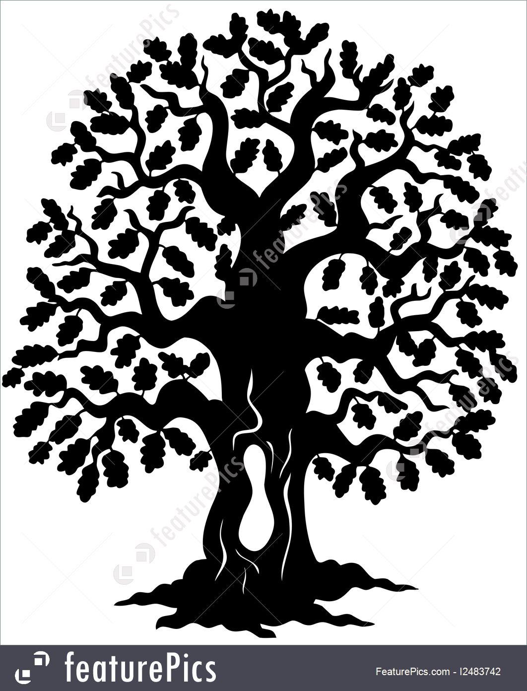 1062x1392 Oak Tree Silhouette Illustration
