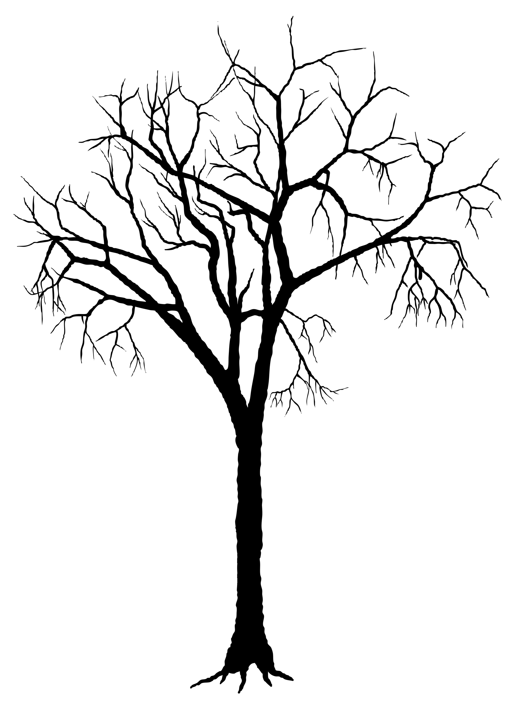 1771x2400 Silhouette Tree Silhouette Of Trees Clipart Wallflower Silhouettes