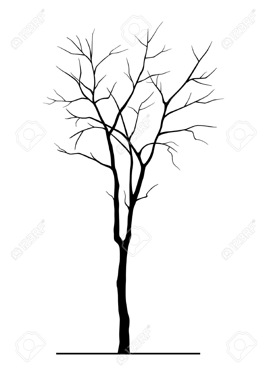 931x1300 Tree Silhouette Without Leaves Royalty Free Cliparts, Vectors,
