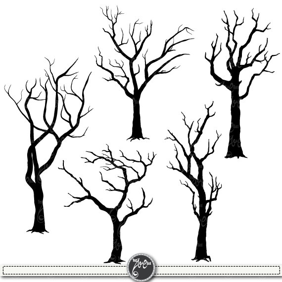 570x570 Tree Silhouettes Clipart Tree Silhouettes Clip Art