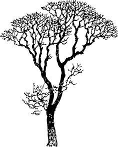 236x293 Bare Trees Bare Tree Stock Vector 51509725 Shutterstock