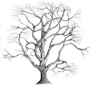 Tree Pencil Sketch Art