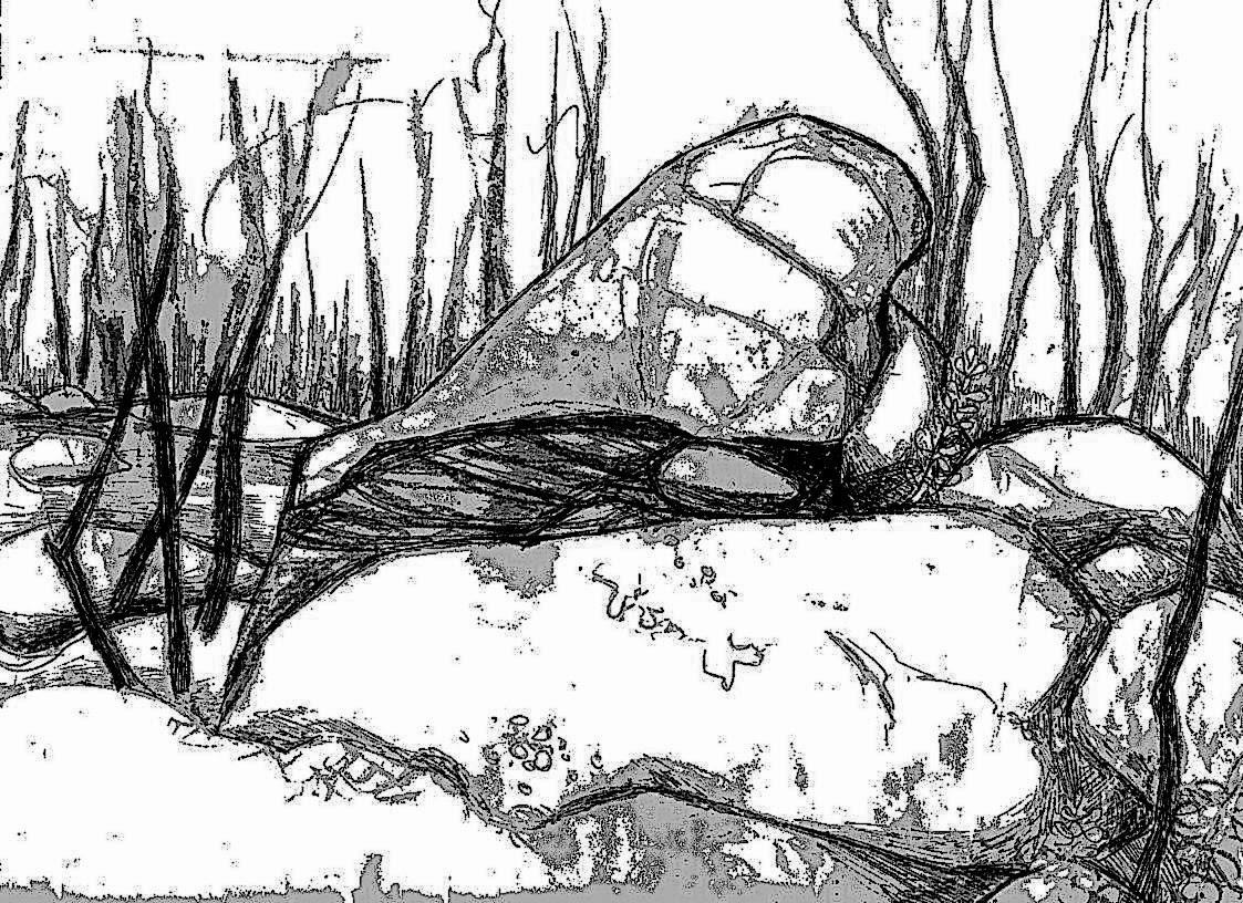 Tree Stump Drawing at GetDrawings | Free download