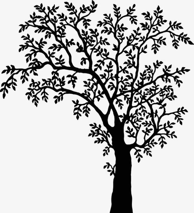 650x716 Black And White Wind Swaying Tree, Black And White Tree, Wind Sway