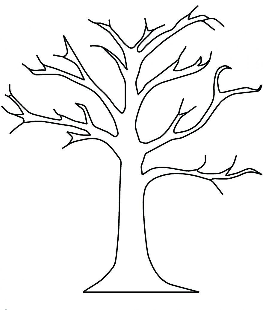 Tree Trunk Line Drawing at GetDrawings | Free download