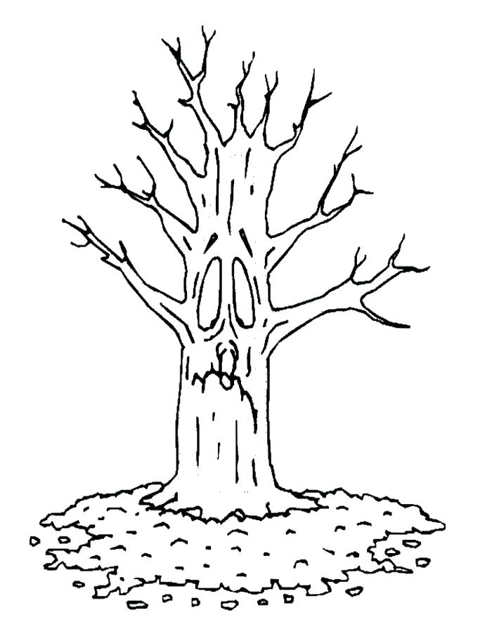 700x906 Bare Tree Coloring Page Tree Bare Tree Trunk Coloring Page