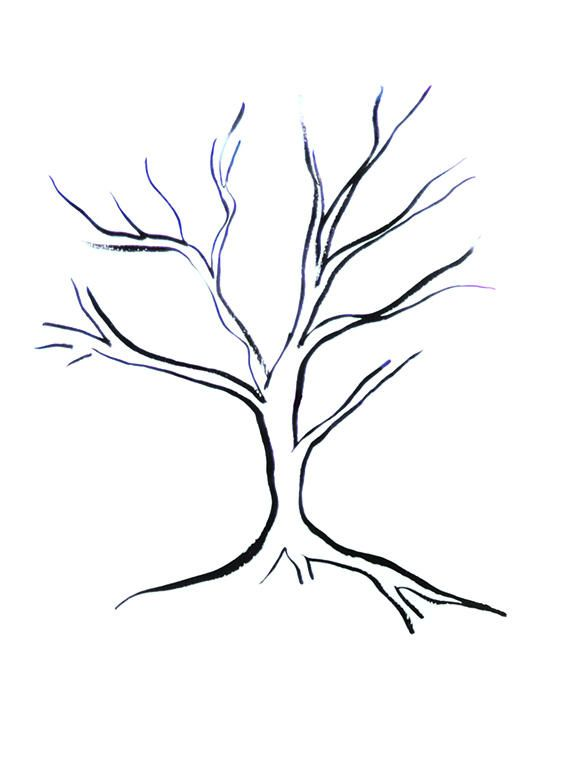 576x765 Pictures Tree Drawing Simple,