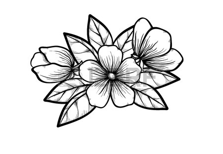 450x312 Simple Black And White Tree Branches Clipart Panda