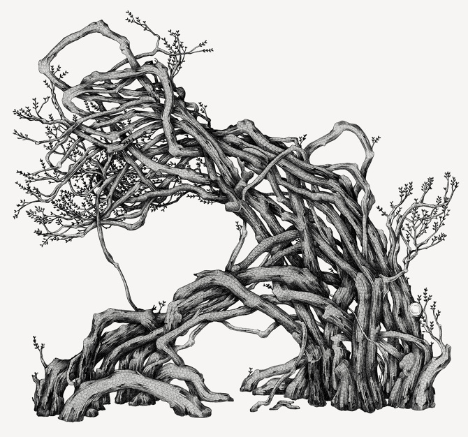 670x626 The Old Tree