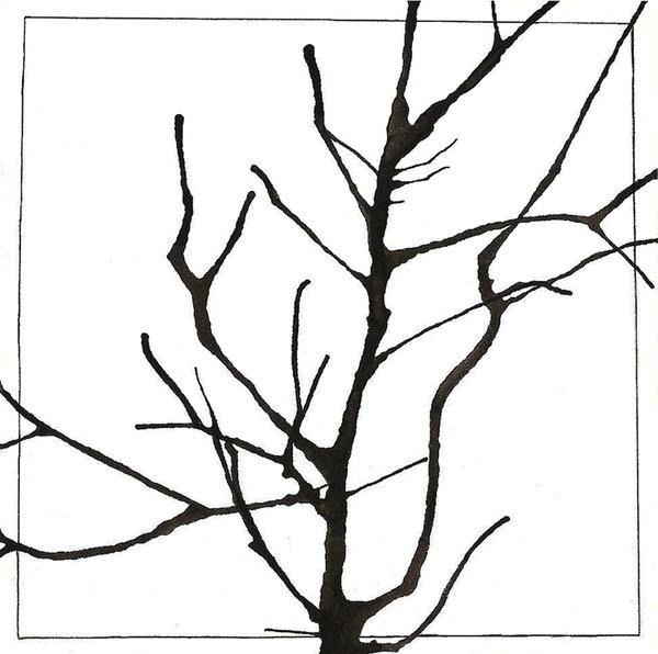 600x596 Tree Branch By Damenisuru