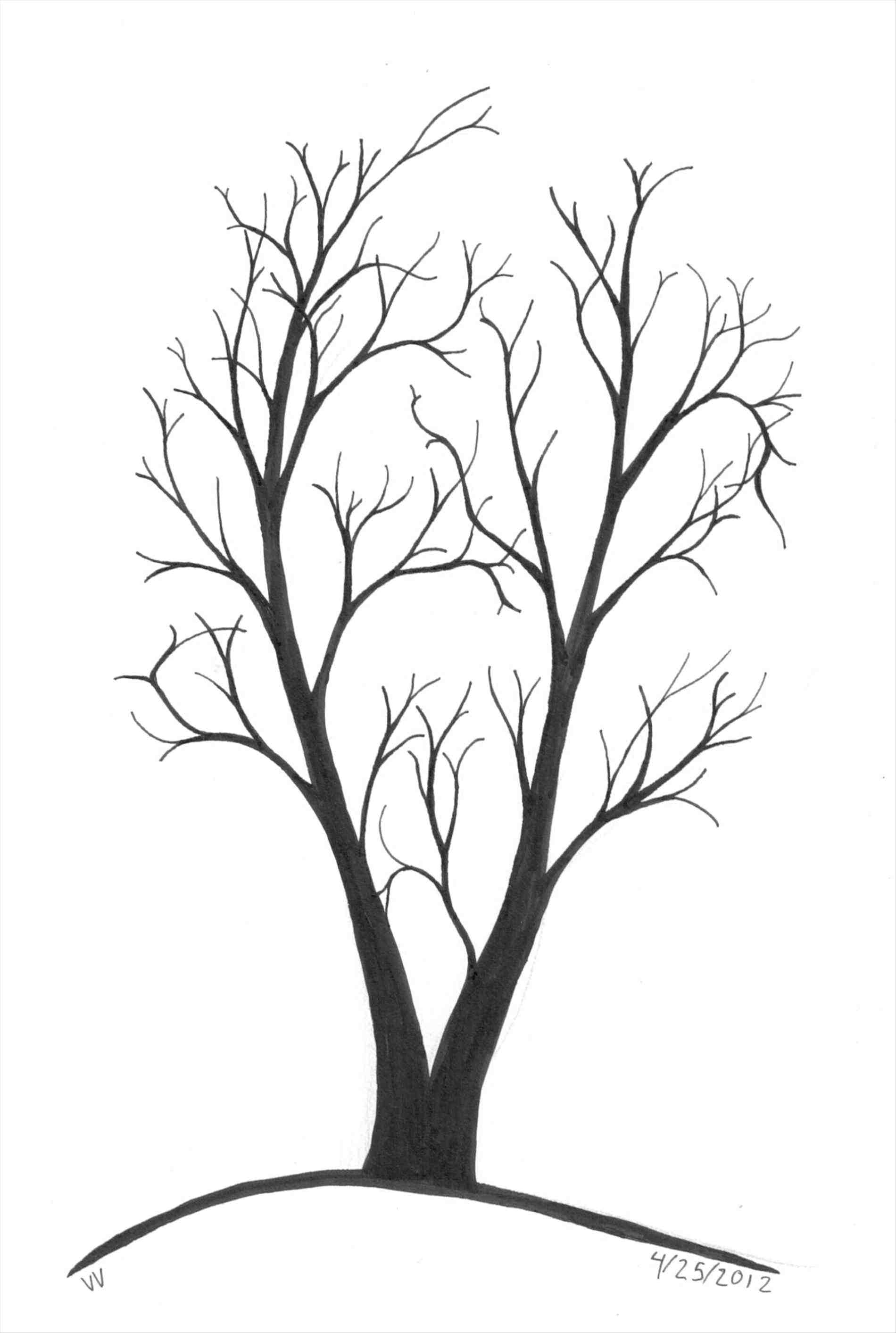 1900x2826 Drawings Of Trees With Branches