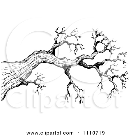 450x470 Cartoon Of A Background Of Black Bare Tree Branches