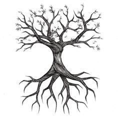 236x236 Image Result For Drawing Roots Cracked Plaster Sky
