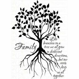 255x255 Roots Clipart Family Tree