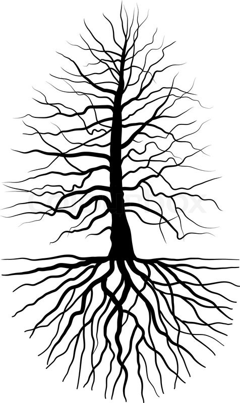 476x800 The Tree And Root Stock Vector Colourbox