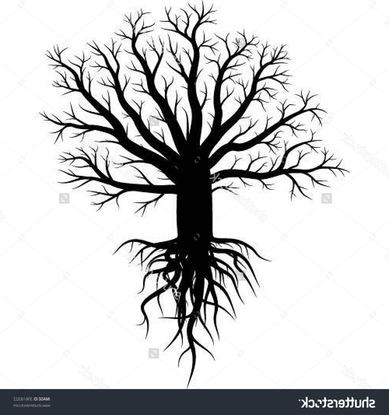 1500x1600 Top 10 Stock Vector Silhouette Of Leafless Tree With Root System