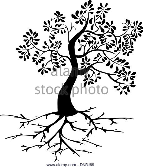460x540 Tree And Roots Vector Black Stock Photos Amp Tree And Roots Vector