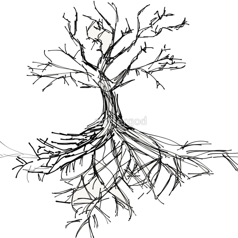 800x800 Tree Sketch With Roots Spiral Notebooks By Pottergod Redbubble