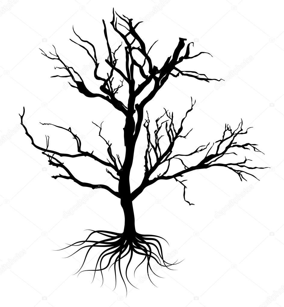 944x1023 Black Naked Trees And Roots. Vector Illustration. Stock Vector