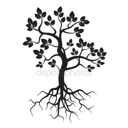 450x450 Young Tree With Roots, White Background Stock Photo Olivier26